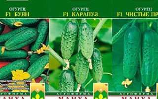 Что означает f1 на семенах клубники