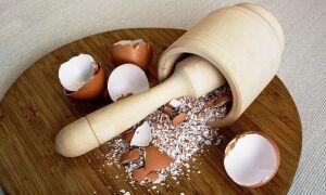 Яичная скорлупа как удобрение для клубники