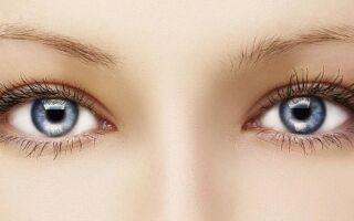 Глаза — интересные факты