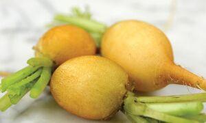 Сорта редиса устойчивые к стрелкованию