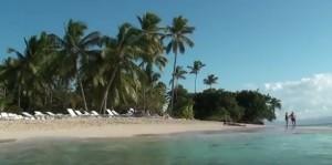 Пальмы и море на Доминиканах