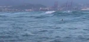 Зимой Средиземное море бывает не только холодным, но и бурным