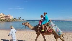 Сейчас туристов меньше, катание на верблюде - дешевле